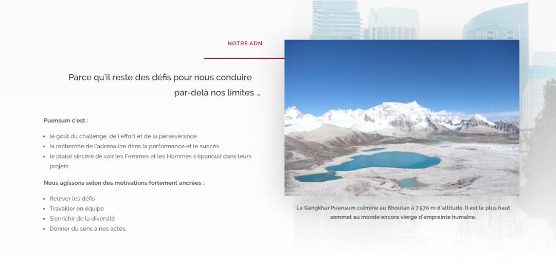 adn puensum 1 - Web at Heart, agence digitale à Lyon